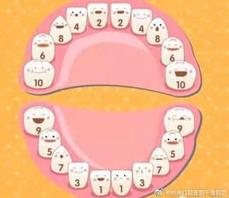 杭州网友,孩子几岁开始换牙?