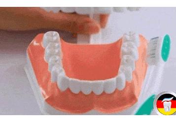 正确的刷牙方法步骤2020版